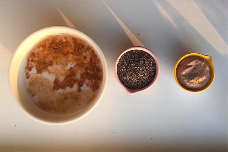 cacao-cinnamon-agave-chia-pudding