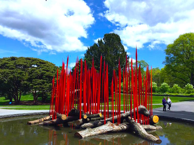 chihuly-nybg-exhibit